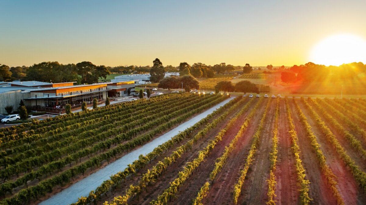 Sunset over Mandoon Estate Swan Valley
